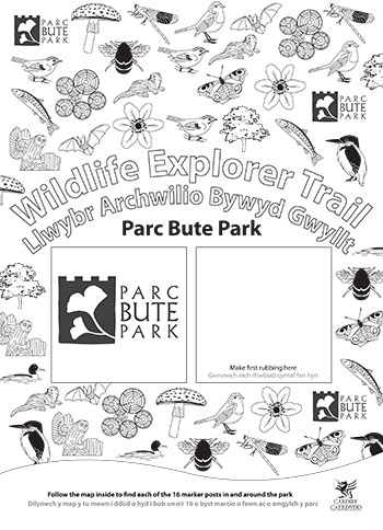 Wildlife Explorer Trails - Bute Park