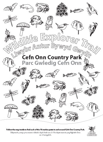 Wildlife Explorer Trails - Parc Cefn Onn trail