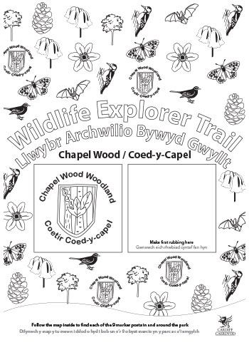 Wildlife Explorer Trails - Chapel wood Trail