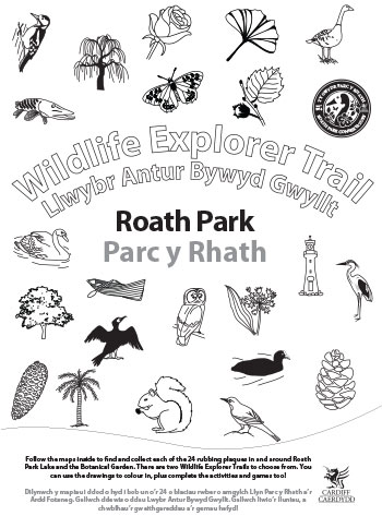 Wildlife Explorer Trails - Roath Park