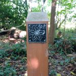 Flower trail post in Chapel wood