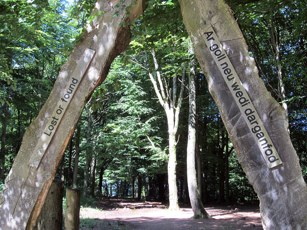 The Forest Fawr trail which is available to dowload from our Countryside Publications