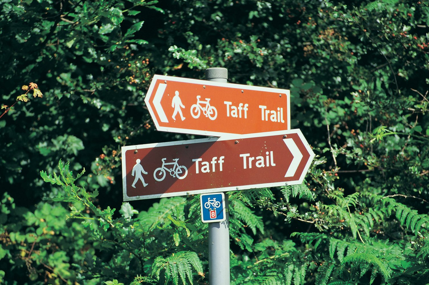 Taff Valley Cycle Trail