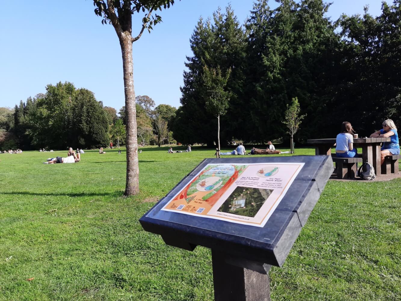 Bute park trail